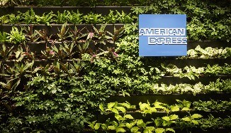American Express Lounge Green Wall