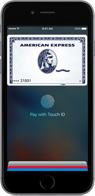 The Apple Pay screen on the iPhone with Halo loaded