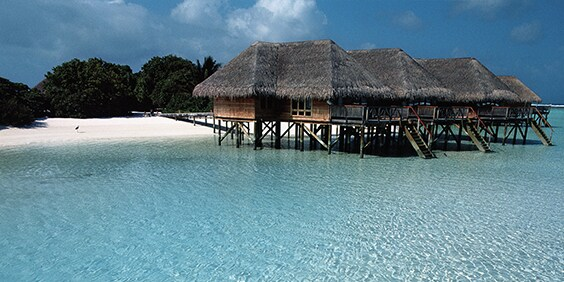 Overwater bungalows in the Maldives - American Express