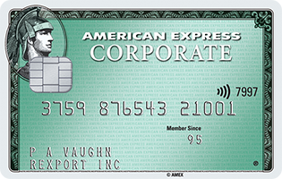 Amex Green Corporate Card  Features & Benefits  Amex ZA