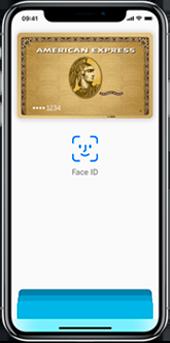 Carte Fidelite Castorama Wallet.Payez En Ligne Avec Votre Carte En Utilisant Apple Pay Amex Fr