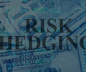 Learn more about some simple foreign exchange risk hedging tools that can help businesses to manage FX risk.