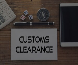 What is Customs' Automated Commercial Environment (ACE)?