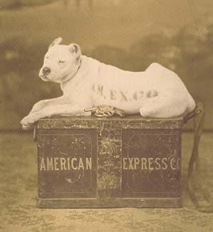 American Express Watchdog Logo