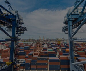 Although port operators play a vital role in keeping international trade running smoothly, port congestion issues are on the rise. Learn how automation can help.