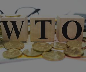 The WTO and International Trade