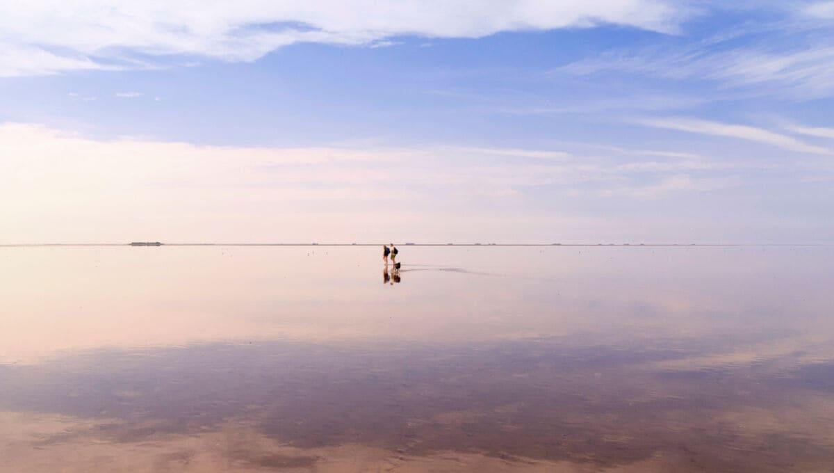 Zwei Menschen im Watt, im Hintergrund eine Hallig