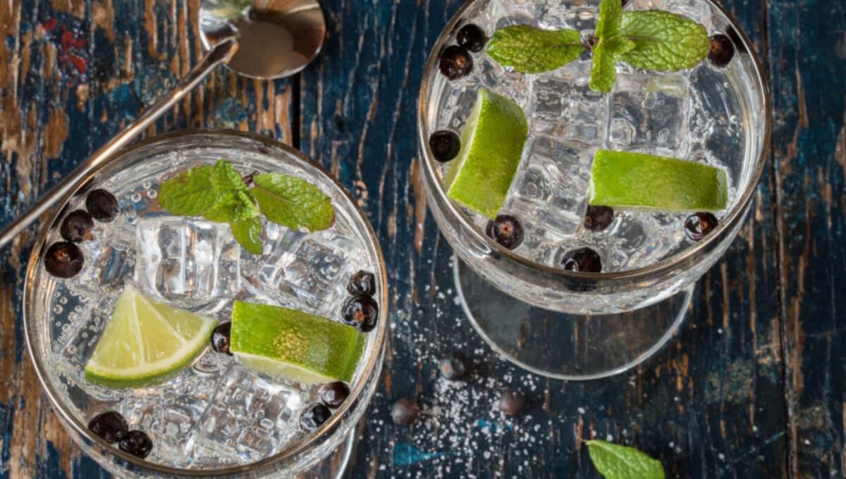 Zwei Gläser Gin Tonic mit Limette, Minze und Wacholderbeeren