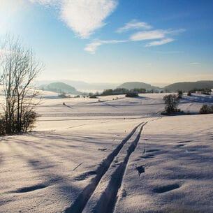 Eine Langlauf-Loipe mit weitem Blick in die ebene Landschaft.