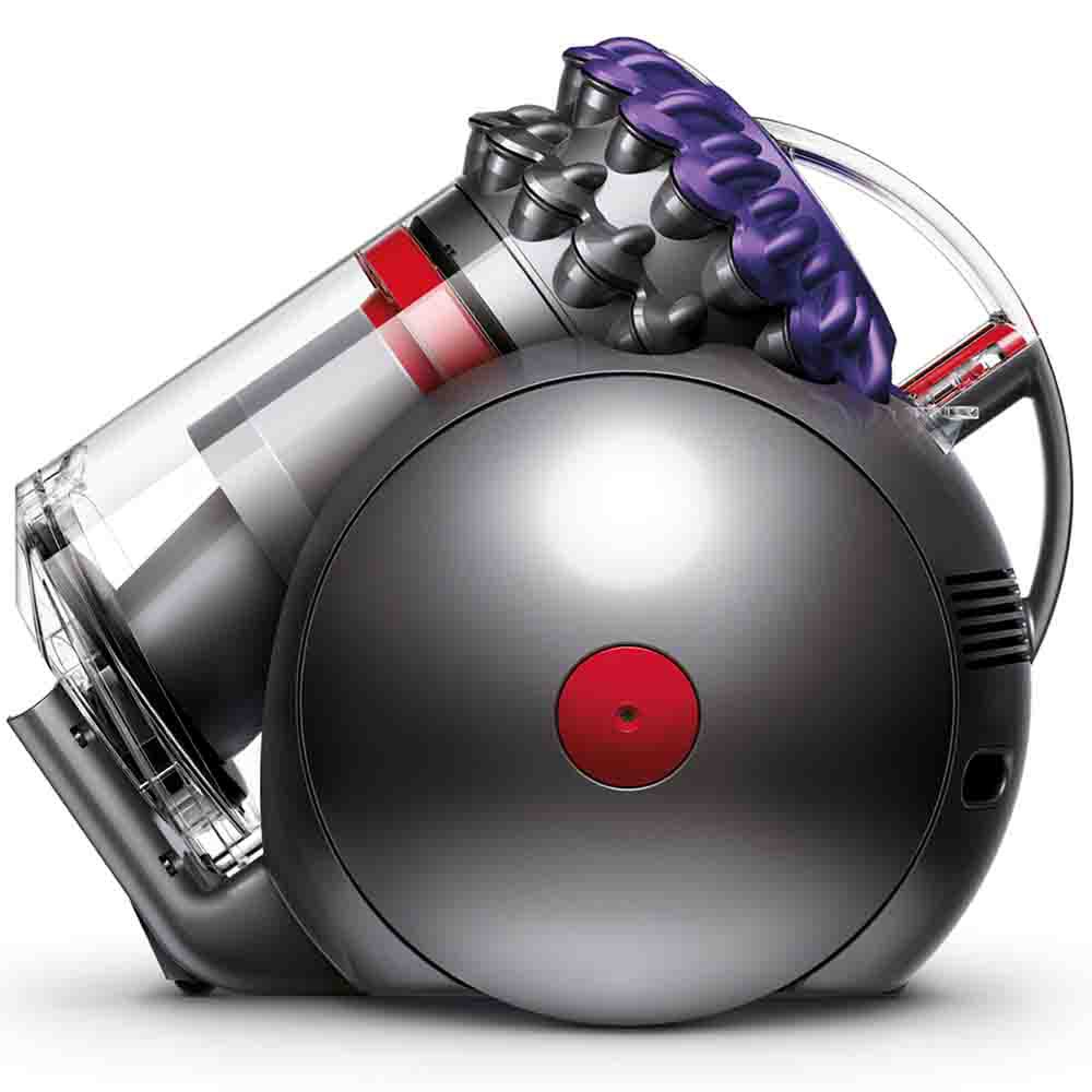 Dyson Big Ball Animal Vacuum