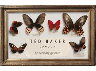 Ted Baker Gift Card